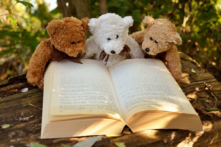 Teddy bears reading a book together
